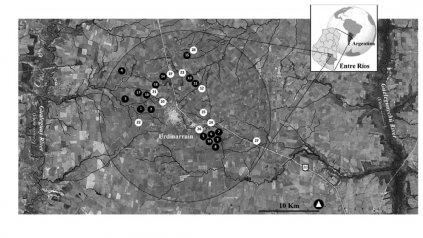 """El mapa. Los lotes donde hicieron las muestras fue publicado en la revista """"Environmental Pollution""""."""