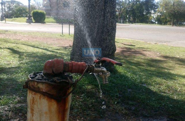 Otra canilla que pierde agua en el Parque Urquiza. Foto UNO.